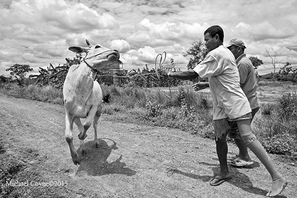 michael coyne documentary photographer and photojournalist: A farmer who is a landmine victim - Cambodia