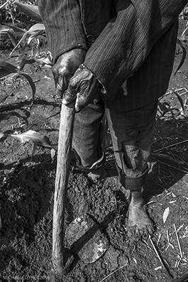 Farmer working in the fields - Malawi : michael coyne documentary photographer and photojournalist