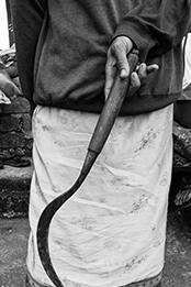 Farmer Bali